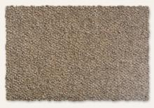 Earth Weave Bio-Floor Rainier Granite