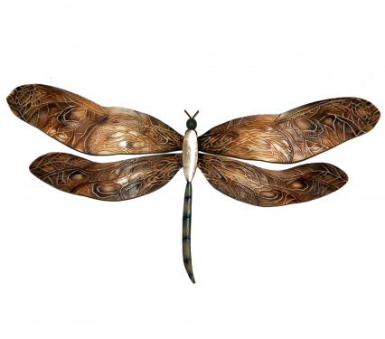 Eangee Earth Toned Dragonfly Wall Art