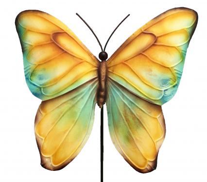 Eangee Butterfly